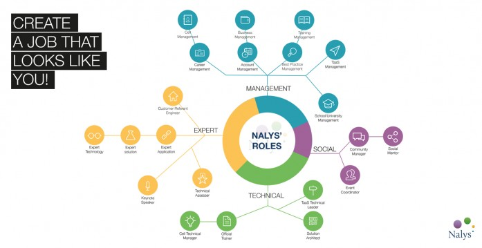 NALYS ROLES: BUILD YOUR OWN TAILORED JOB