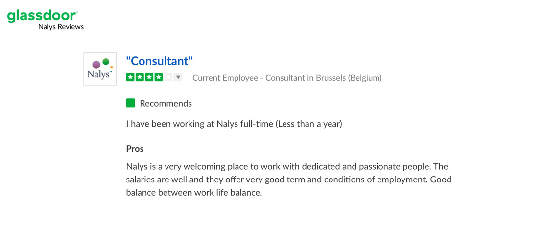 working-consulting-review-nalys.jpg